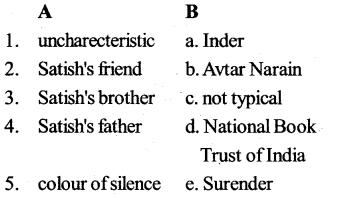 KSEEB SSLC Class 10 English Solutions Prose Chapter 7 Colours of Silence 8