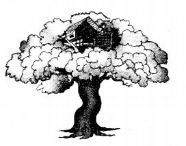 KSEEB SSLC Class 10 English Solutions Poetry Chapter 1 Grandma Climbs a Tree 3