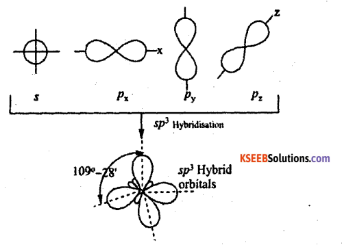 1st PUC Chemistry Question Bank Chapter 4 Chemical Bonding and Molecular Structure - 10