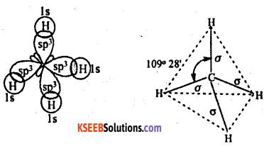 1st PUC Chemistry Question Bank Chapter 4 Chemical Bonding and Molecular Structure - 19