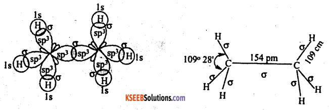 1st PUC Chemistry Question Bank Chapter 4 Chemical Bonding and Molecular Structure - 20