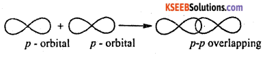 1st PUC Chemistry Question Bank Chapter 4 Chemical Bonding and Molecular Structure - 4