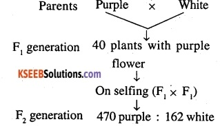 2nd PUC Biology Question Bank Chapter 5 Principles of Inheritance and Variation 11