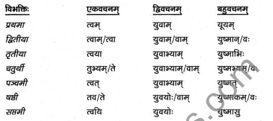 1st PUC Sanskrit Textbook Answers Vyakaran शब्दाः 13