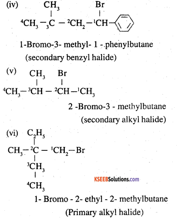 2nd PUC Chemistry Question Bank Chapter 10 Haloalkanes and Haloarenes - 2