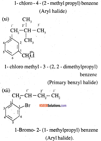 2nd PUC Chemistry Question Bank Chapter 10 Haloalkanes and Haloarenes - 4