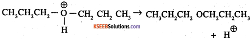 2nd PUC Chemistry Question Bank Chapter 11 Alcohols, Phenols and Ethers - 51