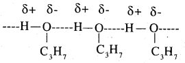 2nd PUC Chemistry Question Bank Chapter 11 Alcohols, Phenols and Ethers - 9