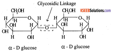 2nd PUC Chemistry Question Bank Chapter 14 Biomolecules - 2