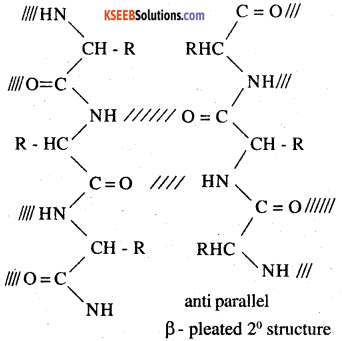 2nd PUC Chemistry Question Bank Chapter 14 Biomolecules - 6