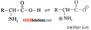 2nd PUC Chemistry Question Bank Chapter 14 Biomolecules - 8