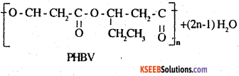 2nd PUC Chemistry Question Bank Chapter 15 Polymers - 13