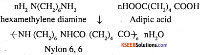 2nd PUC Chemistry Question Bank Chapter 15 Polymers - 2