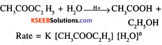 2nd PUC Chemistry Question Bank Chapter 4 Chemical Kinetics - 31