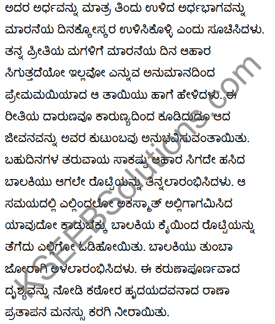 महाराणाप्रतापः Summary in Kannada 41