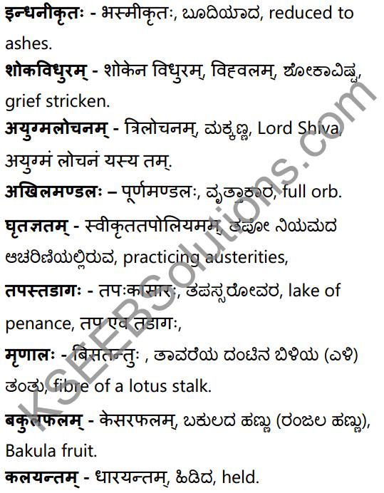 अनुरागोदयः Summary in Kannada and English 38