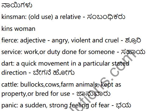 Dog Finds his Master Summary in Kannada 5