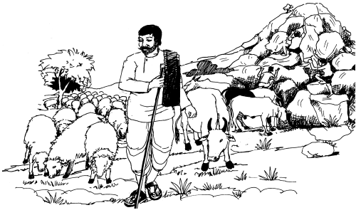 Hakkigal Summary in Kannada 5