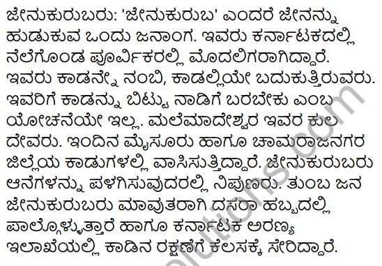 Jenu Kurubara Tayiyu Kadu Aneya Maganu Summary in Kannada 9