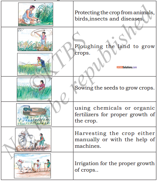 KSEEB Solutions for Class 5 EVS Chapter 8 Agriculture 1