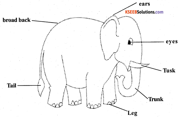 KSEEB Solutions for Class 5 English Poem Chapter 1 The Elephant 3