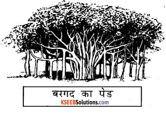 KSEEB Solutions for Class 6 Hindi Chapter 25 वनमहोत्सव 2