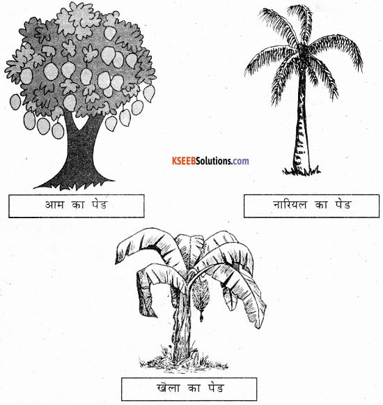 KSEEB Solutions for Class 6 Hindi Chapter 25 वनमहोत्सव 3