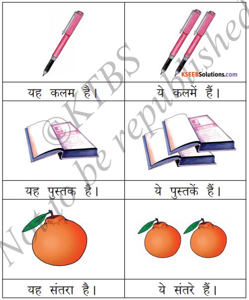 KSEEB Solutions for Class 6 Hindi Chapter 9 यह, ये, वह, वे 1