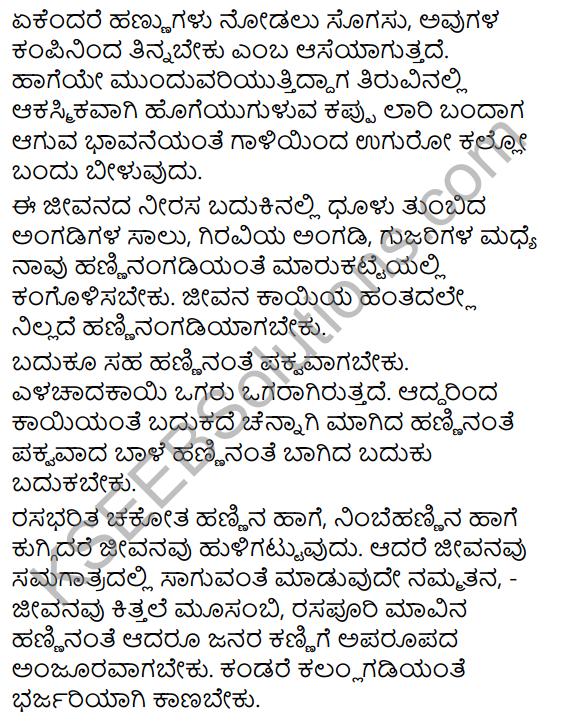 Magu Mattu Hannugalu Summary in Kannada 3