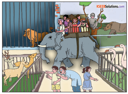 The Elephant Summary In English 1