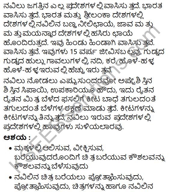 Navilu Summary in Kannada 14