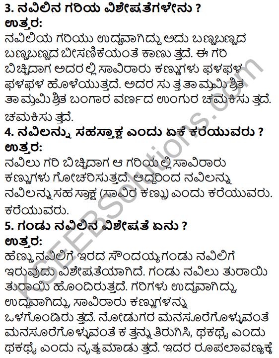 Tili Kannada Text Book Class 5 Solutions Gadya Chapter 2 Navilu 4