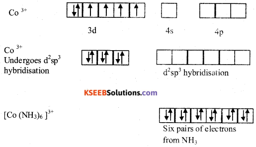 2nd PUC Chemistry Previous Year Question Paper June 2019 9