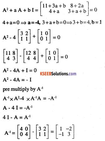 2nd PUC Maths Question Bank Chapter 4 Determinants Ex 4.5.19