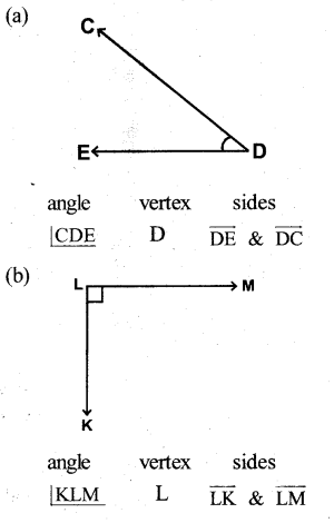 KSEEB Solutions for Class 5 Maths Chapter 6 Angles 5