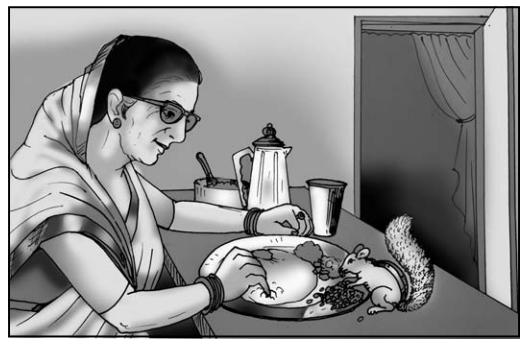 गिल्लू Summary in Hindi 2