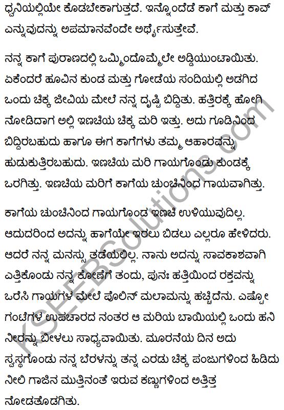 गिल्लू Summary in Kannada 2