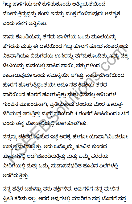 गिल्लू Summary in Kannada 4