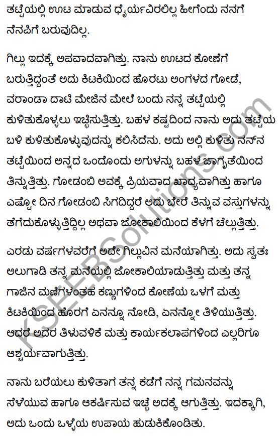 गिल्लू Summary in Kannada 5