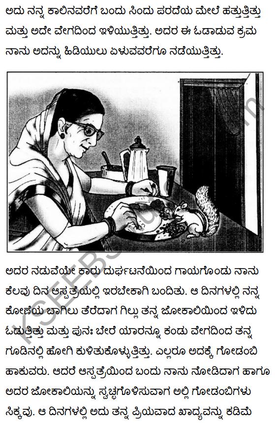 गिल्लू Summary in Kannada 6