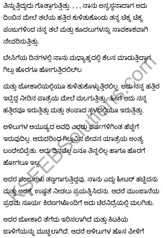 गिल्लू Summary in Kannada 7