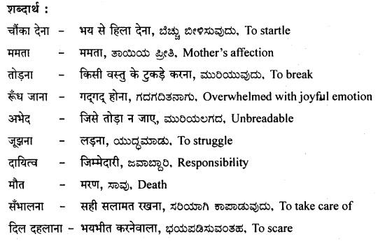 मेरा देश, मेरी माँ Summary in Kannada 3