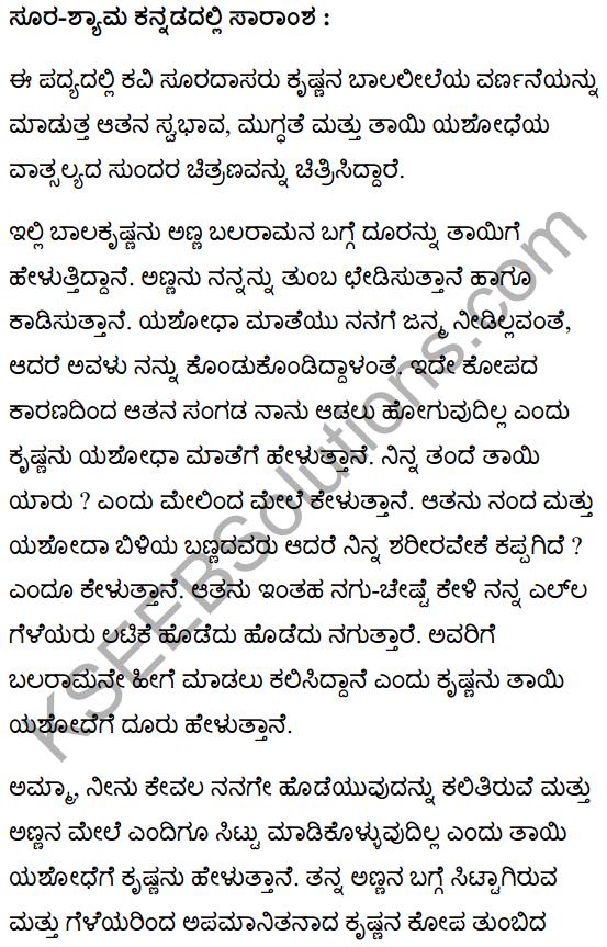 सूर-श्याम Summary in Kannada 1