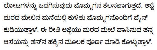 Grandma Climbs a Tree Poem Summary in Kannada 3