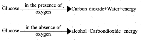 KSEEB Solutions for Class 7 Science Chapter 10 Respiration in Organisms 2