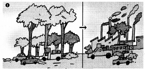 KSEEB Solutions for Class 7 Science Chapter 17 Forests Our Lifeline 59