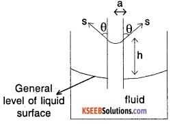 1st PUC Physics Question Bank Chapter 10 Mechanical Properties Of Fluids img 18