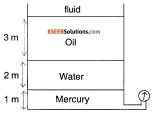 1st PUC Physics Question Bank Chapter 10 Mechanical Properties Of Fluids img 31