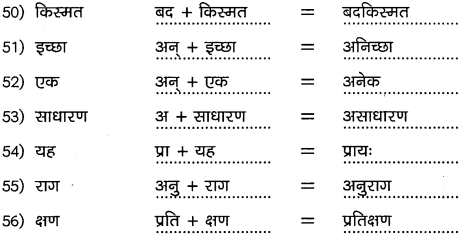 2nd PUC Hindi Workbook Answers व्याकरण उपसर्ग 8
